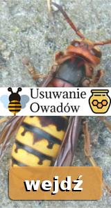 usuwanieowadow.pl